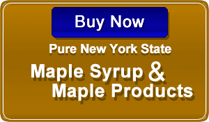 Big Tree Maple - Buy Online Pure New York State Maple Syrup & Maple Products