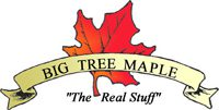 Big Tree Maple